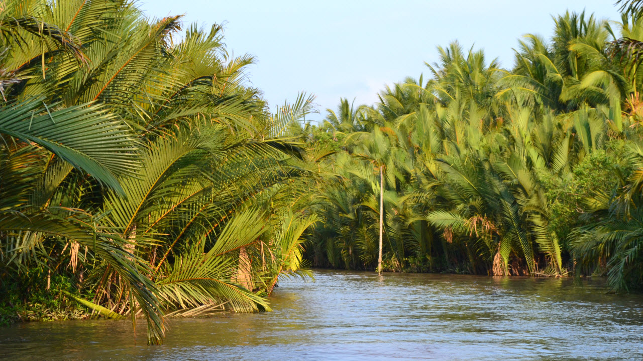 Mekong delta tours BenTre - cruise in waterway