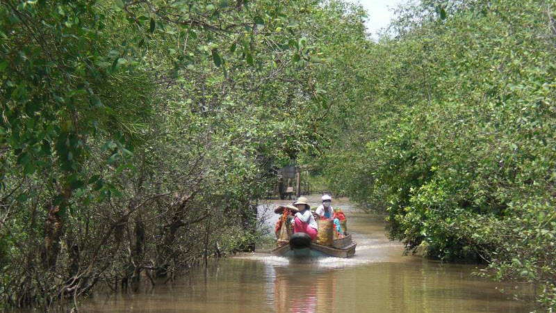 Mekong delta tours Cai Be
