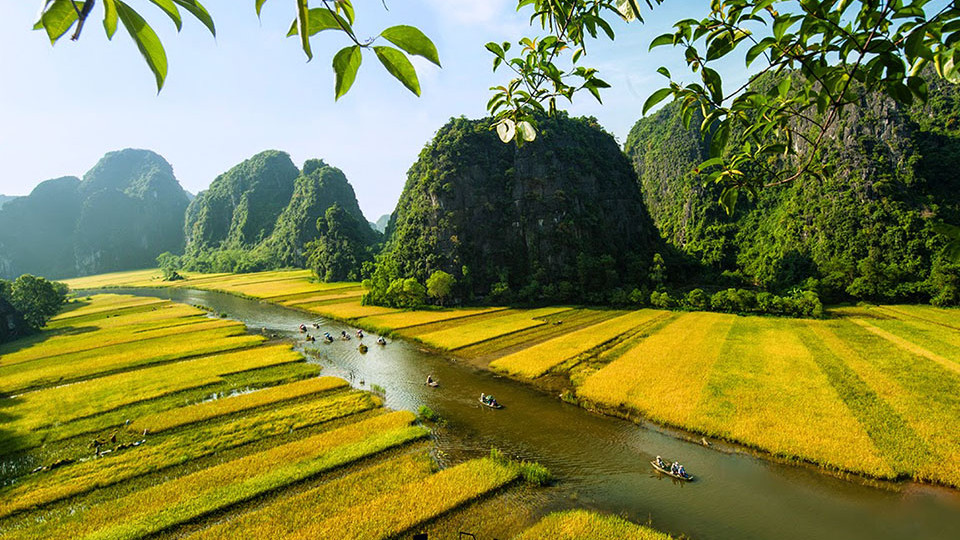 Boat paddling in Tam Coc Vietnam
