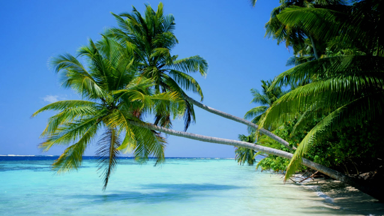 Vietnam beaches PhuQuoc island - Bai Dai