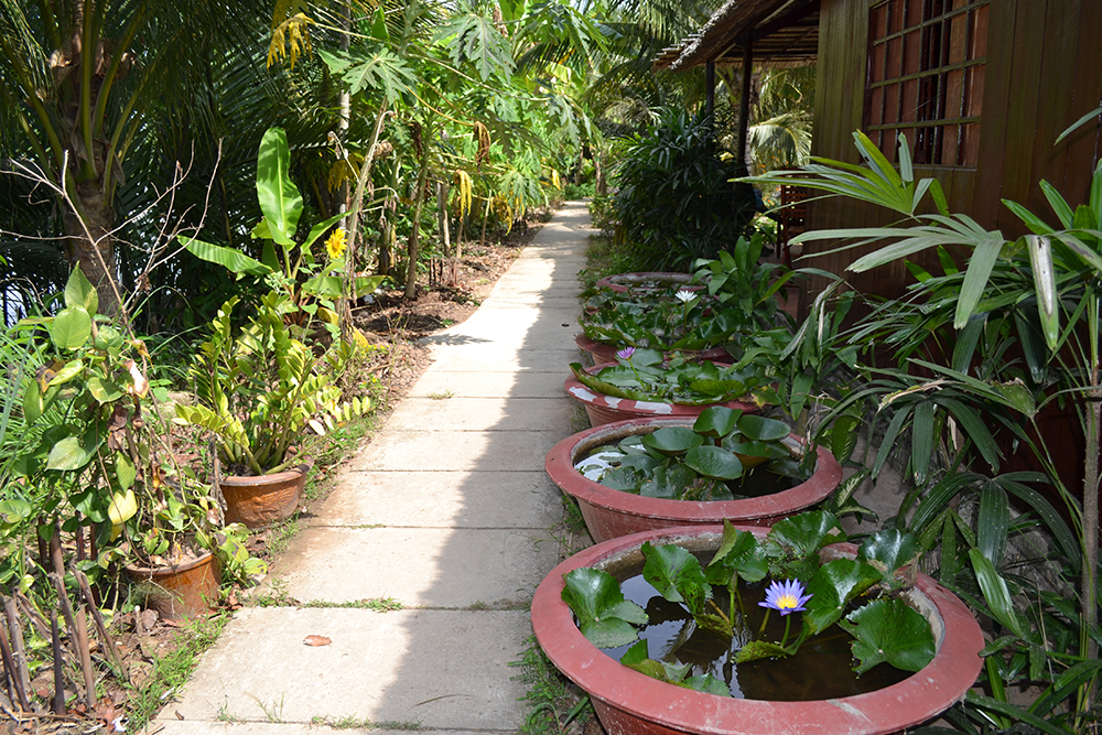 Homestay place in MoCay - BenTre - Mekong delta tour BenTre