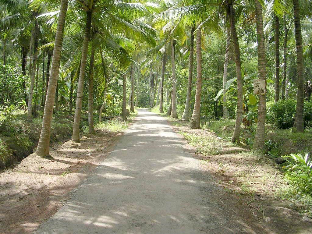 TamPhuoc commune road - Mekong delta cycling BenTre