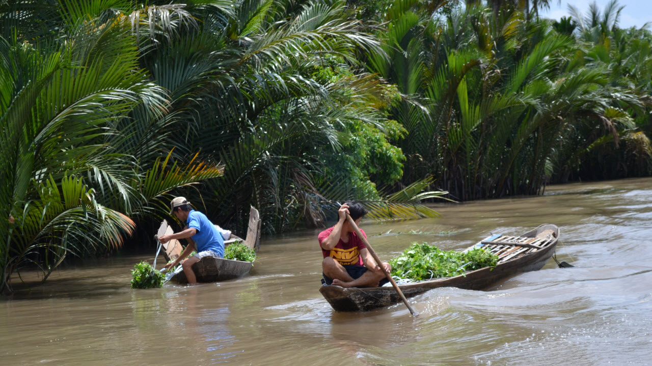 Cycling mekong delta BenTre 2 days