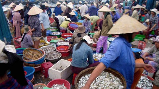 Fish market in Hoi an Vietnam