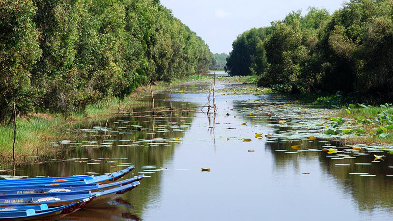 Mekong delta tour 3 days - TraSu nature reserve