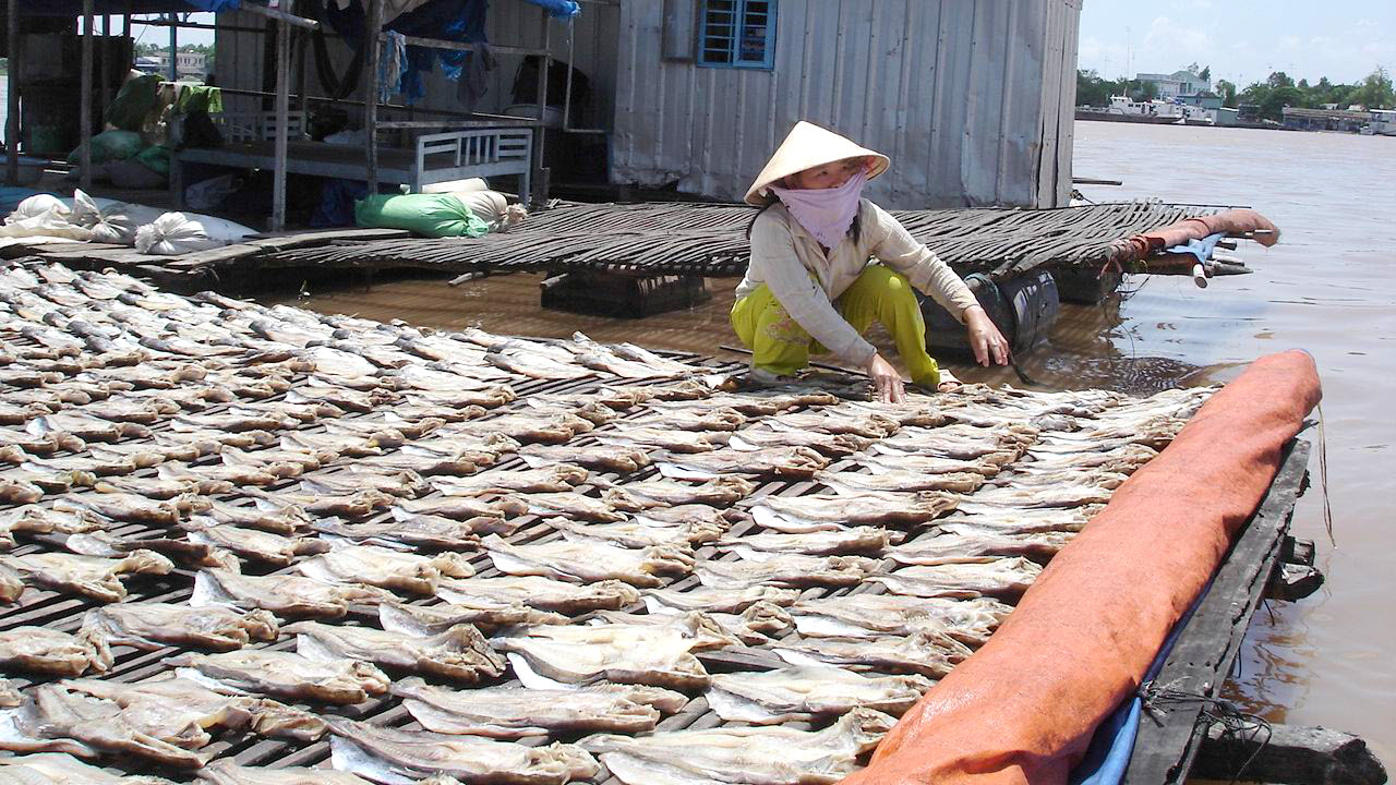 Mekong delta tours 3 days - Dry fish in ChauDoc floating village