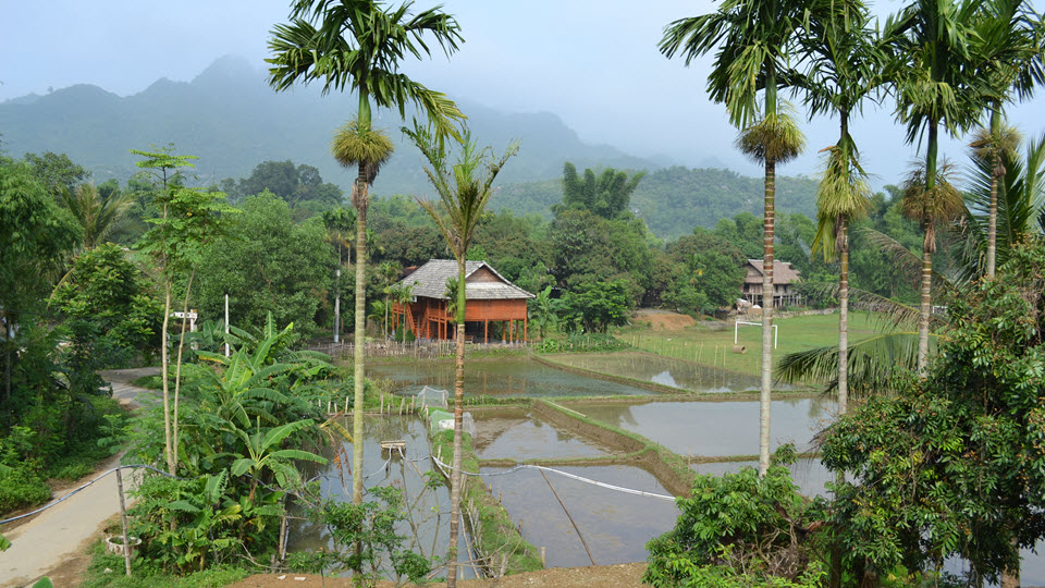 Scenery of Ban Lac Mai Chau homestay
