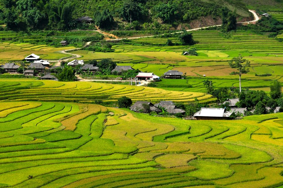 Rice terraces in Pu Luong - Mai Chau trek