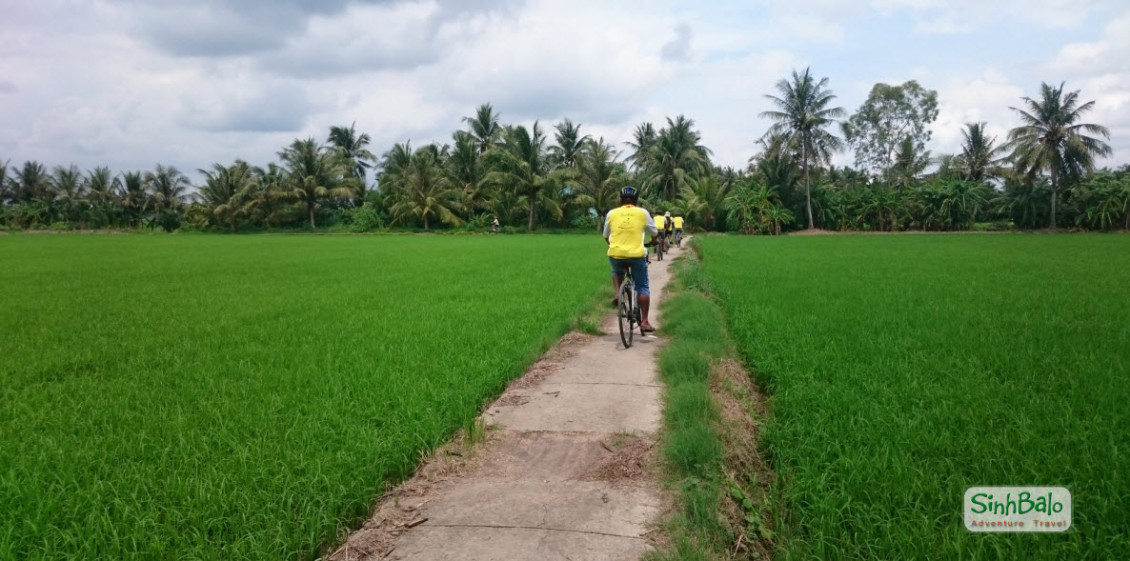A bike trail from TraVinh to SocTrang - Mekong delta cycling tour 2 days BenTre TraVinh