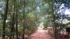Bike to CuChi tunnels - Saigon river trail